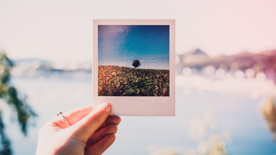 SEO Use Photos